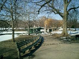 Boston Common, with snow