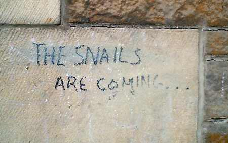 Edinburgh Graffiti: The snails are coming